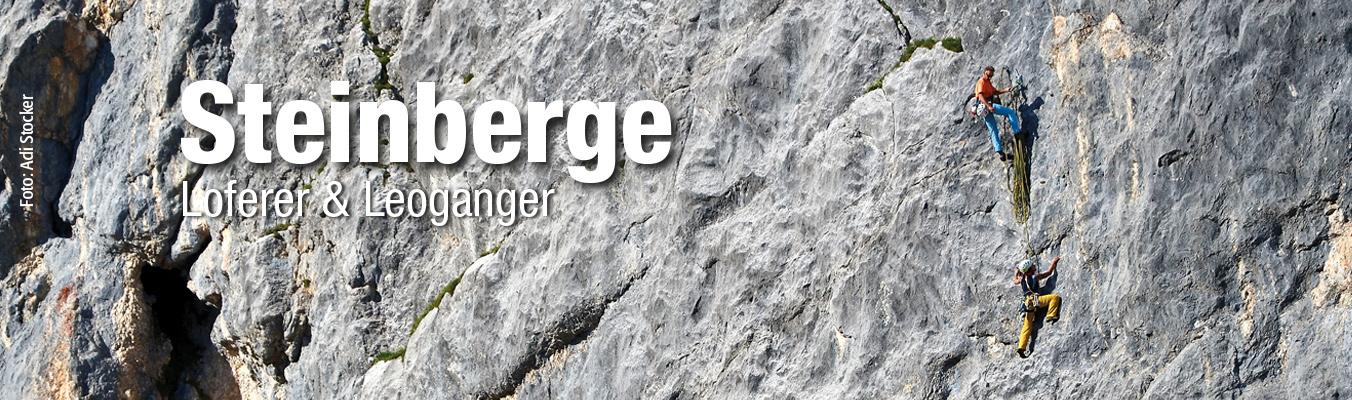 Alpinkletterführer Loferer und Leoganger Steinberge